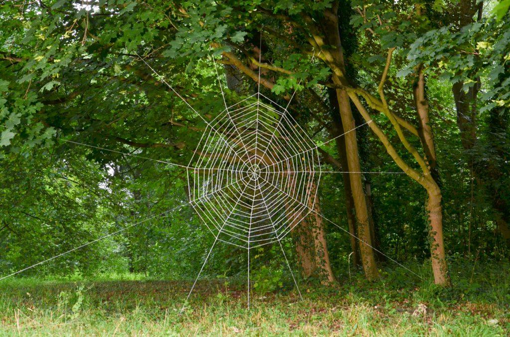 Netz - gehäkelt, Durchmesser 5m